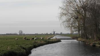 De polder Spengen